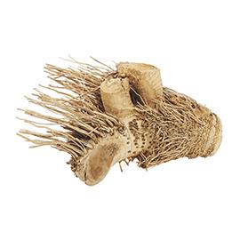 ProRep Hedgehog Bamboo Root