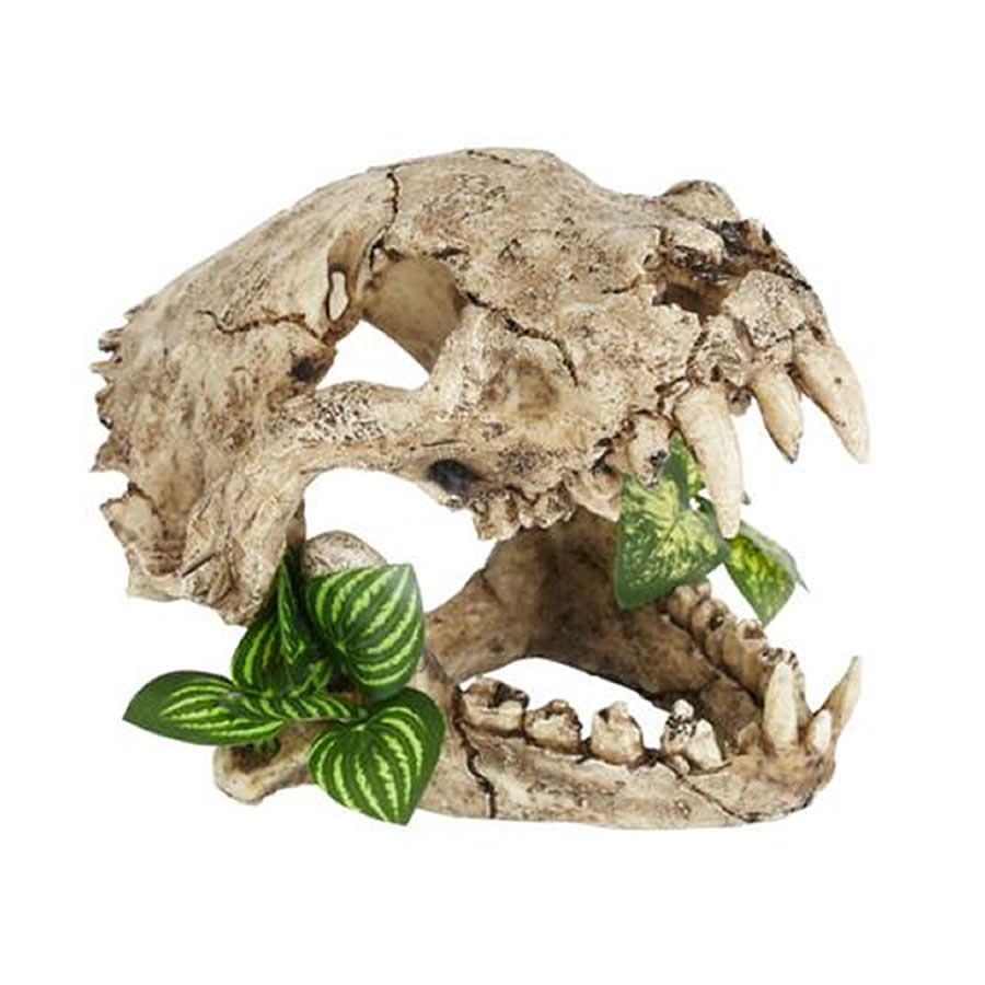 Resin Tiger Skull With Plants Prorep