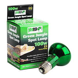 Green Jungle Spotlamp