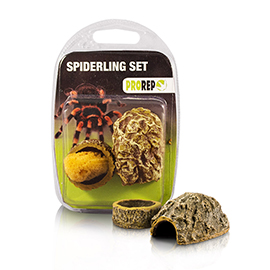 Spiderling Set