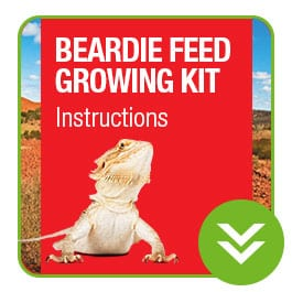 ProRep Beardie Feed growing Kit Instructions