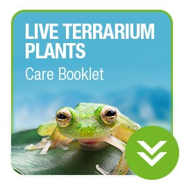 ProRep Live Plant Care Booklet