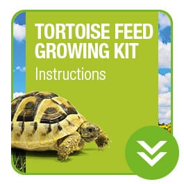 ProRep Tortoise Feed growing Kit Instructions