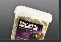 Chafer Beetle Kit